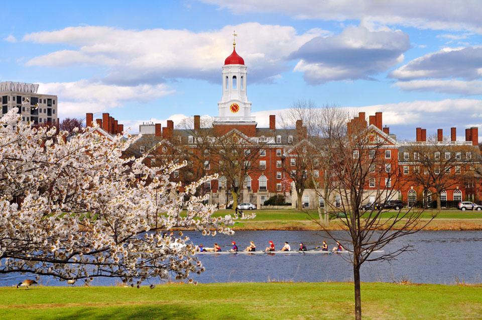 Harvard - Crimson Education