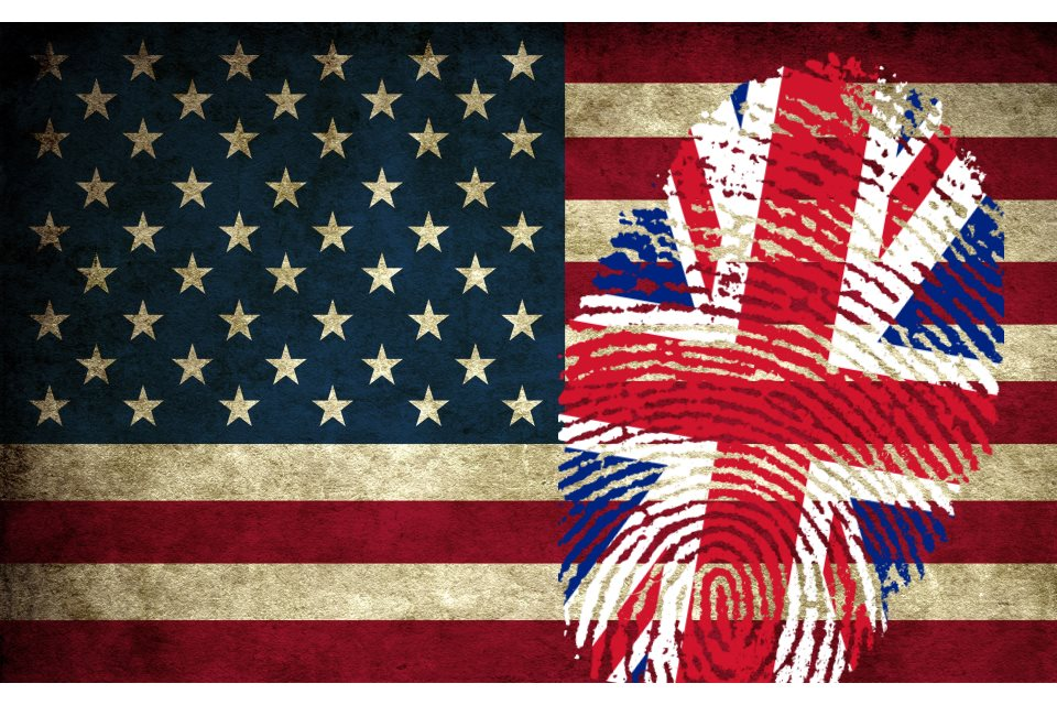American British Flag Fingerprint