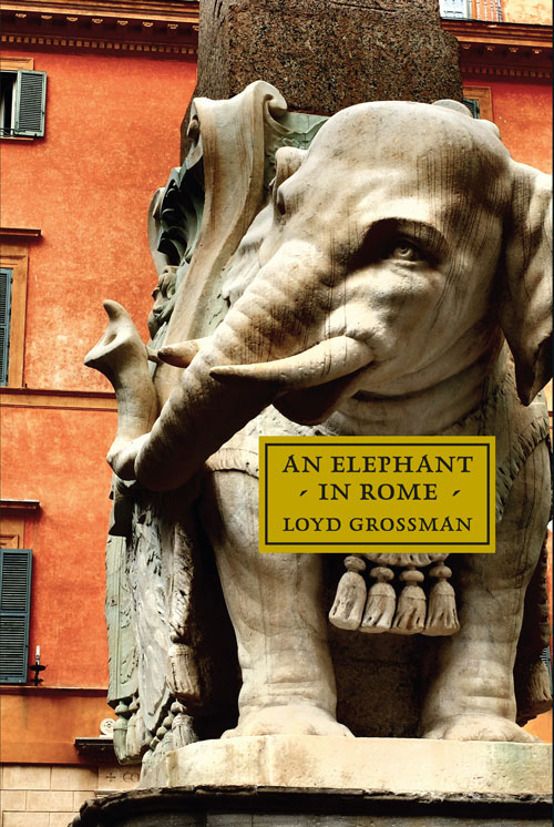 An Elephant in Rome book